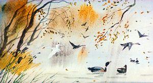 Первый осенний холод, от которого пожелтела трава, привел всех птиц в большую тревогу. Все начали готовиться в далекий путь. Иллюстрация В. Дугина к рассказу Д. Н. Мамина-Сибиряка «Серая Шейка»