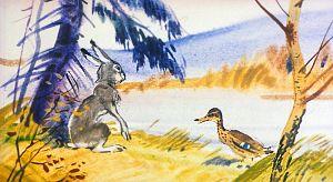 Заяц и Серая Шейка. Иллюстрация В. Дугина к рассказу Д. Н. Мамина-Сибиряка «Серая Шейка»