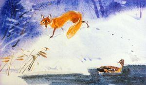 — Какая ты глупая, уточка… Вылезай на лед! А впрочем, до свидания! Я тороплюсь по своим делам… Иллюстрация В. Дугина к рассказу Д. Н. Мамина-Сибиряка «Серая Шейка»