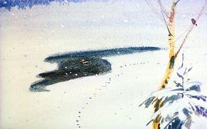 От большой полыньи оставалось всего одно окно в сажень величиной. Иллюстрация В. Дугина к рассказу Д. Н. Мамина-Сибиряка «Серая Шейка»