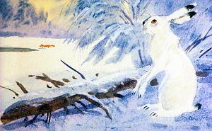 — Ах, какая бессовестная эта Лиса… Какая несчастная эта Серая Шейка! Съест ее Лиса… Иллюстрация В. Дугина к рассказу Д. Н. Мамина-Сибиряка «Серая Шейка»