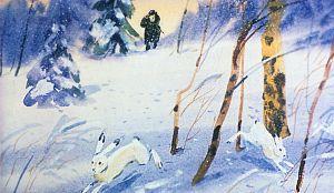 Старичок охотник прицелился из ружья, но зайцы его заметили и кинулись в лес, как сумасшедшие. Иллюстрация В. Дугина к рассказу Д. Н. Мамина-Сибиряка «Серая Шейка»