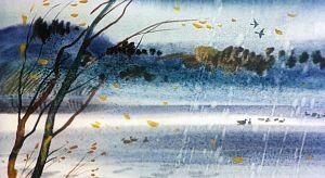 Холодный осенний ветер обрывал засыхавшие листья и уносил их. Небо часто покрывалось тяжелыми осенними облаками, ронявшими мелкий осенний дождь. Иллюстрация В. Дугина к рассказу Д. Н. Мамина-Сибиряка «Серая Шейка»