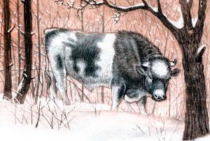 — Куда, баран, идёшь? — спрашивает бык. Иллюстрация Д. Горлова к русской народной сказке «Зимовье зверей»